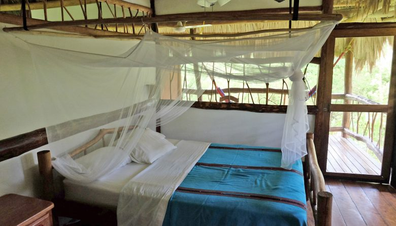 Zimmer in der Cotton Tree Lodge