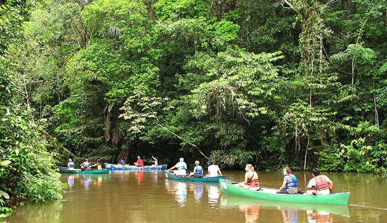 Kanutour im Amazonas-Regenwald Ecuadors